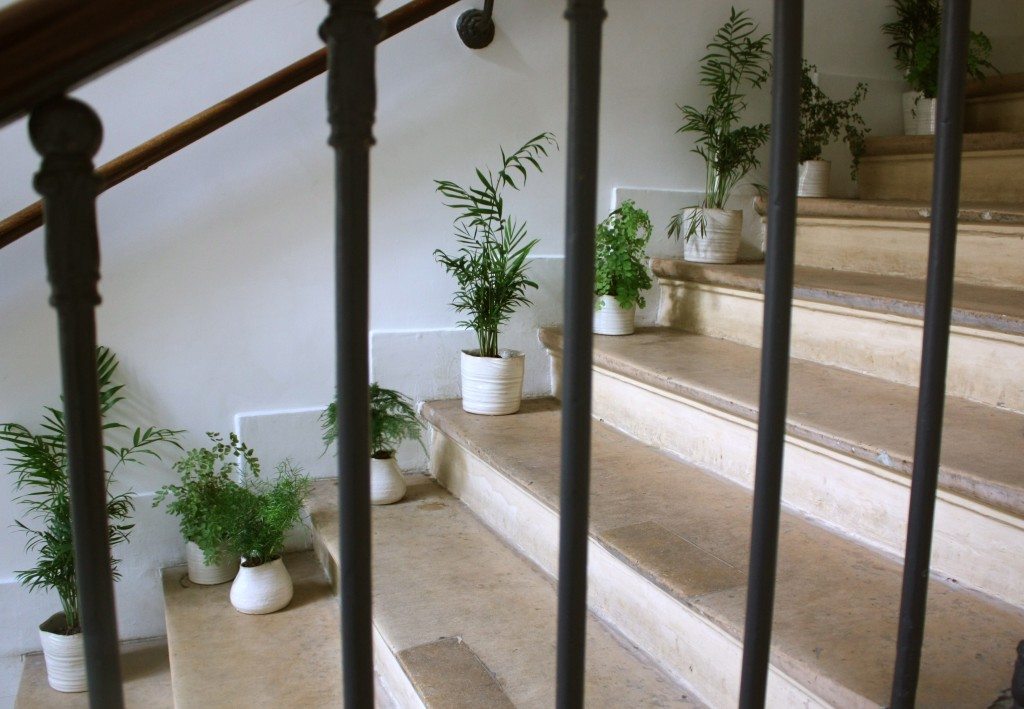 escalier showroom 1